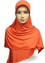 Basic Belah Orange 002